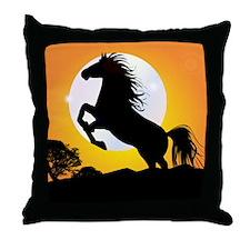 SPIRIT OF PLACITAS Throw Pillow