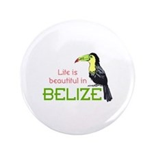 "TOUCAN LIFE IN BELIZE 3.5"" Button"