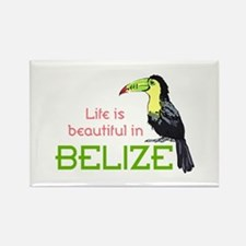 TOUCAN LIFE IN BELIZE Magnets
