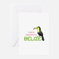 TOUCAN LIFE IN BELIZE Greeting Cards