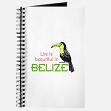 TOUCAN LIFE IN BELIZE Journal