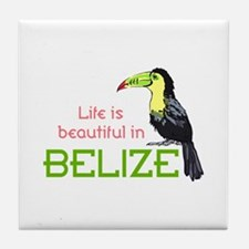 TOUCAN LIFE IN BELIZE Tile Coaster
