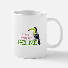 TOUCAN LIFE IN BELIZE Mugs