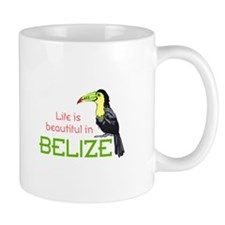 TOUCAN LIFE IN BELIZE Mugs