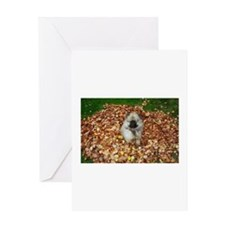 Puppy Keeshond in Leaves Greeting Cards