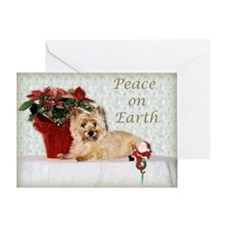 Peaceful Cairn Terrier Greeting Card