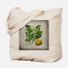 vintage botanical orange Tote Bag