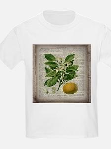 vintage botanical orange T-Shirt