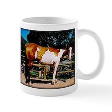 Buckskin Overo Paint Horse Mug