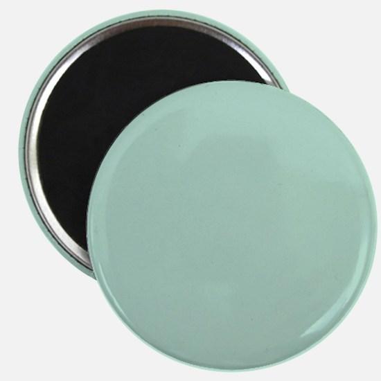 beach seafoam green Magnets