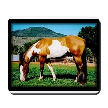 Buckskin Overo Paint Horse Mousepad