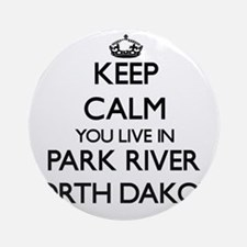 Keep calm you live in Park River Ornament (Round)