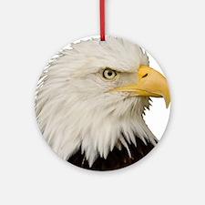 Cute Bald eagles Round Ornament