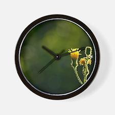 Cute Backlit Wall Clock