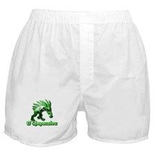 Chupacabra Plain Green Boxer Shorts