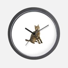 cat tabby Wall Clock