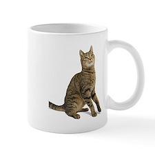 cat tabby Mugs
