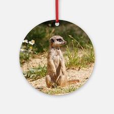 Cute Meerkat Round Ornament