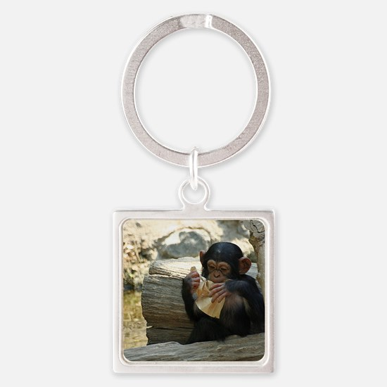 Funny Funny animal Square Keychain