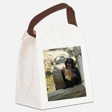 Funny Primate Canvas Lunch Bag
