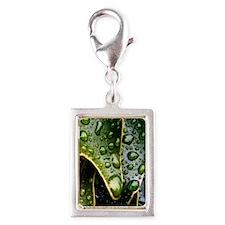 Wet Leaf Charms