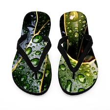 Wet Leaf Flip Flops