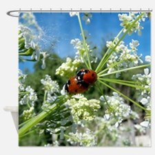 funny ladybug luck at love playing  Shower Curtain