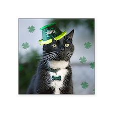 St. Patrick kitty Sticker