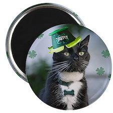St. Patrick kitty Magnets