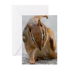 Ninja Chipmunk Greeting Card