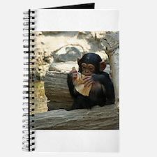 Chimpanzee_2015_0101 Journal