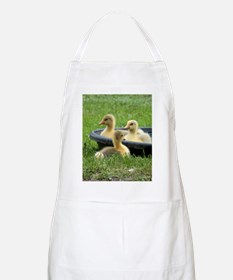 Three little goslings wildlife in the mornin Apron