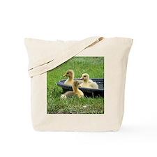 Three little goslings wildlife in the mor Tote Bag