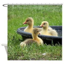 Three little goslings wildlife in t Shower Curtain