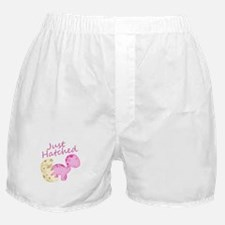 Just Hatched Pink Baby Dinosaur Boxer Shorts