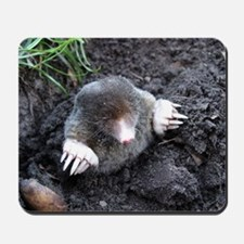 Adorable Mole in Dirt Mousepad