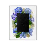 Blue hydrangea Picture Frames