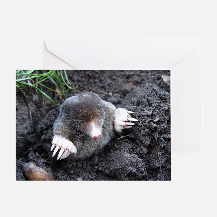 Adorable Mole in Dirt Greeting Card
