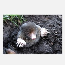 Adorable Mole in Dirt Postcards (Package of 8)
