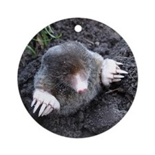 Adorable Mole in Dirt Round Ornament