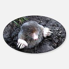 Adorable Mole in Dirt Sticker (Oval)
