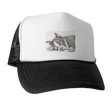 Boston Terrier Puppy Dog Cap