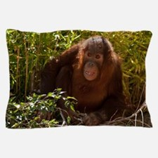 Orangutan Child 7358 Pillow Case