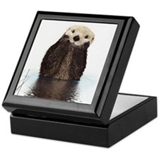 Bashful Sea Otter Keepsake Box