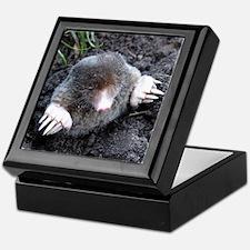 Adorable Mole in Dirt Keepsake Box