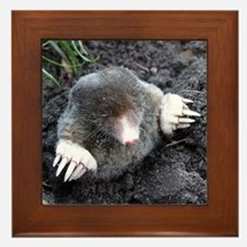 Adorable Mole in Dirt Framed Tile