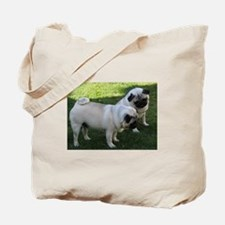 Two fawn Pugs Tote Bag