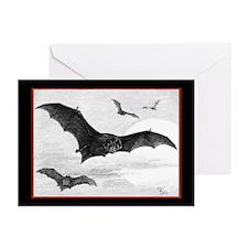Fluttering Wings Halloween Cards (Pk of 20)