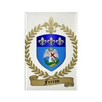 FERRON Family Crest Rectangle Magnet (10 pack)