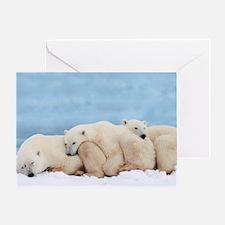 Polar Bear Domino Greeting Card